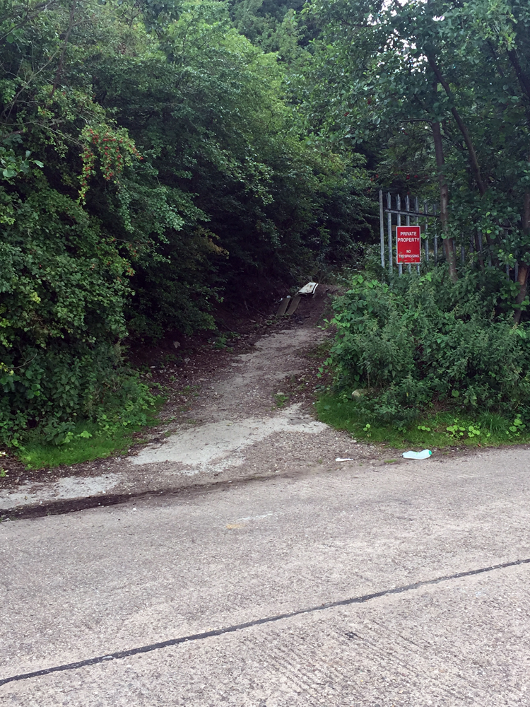 Photo of path leading to old ski slope in Cossall