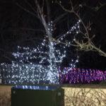 image of Christmas lights 2020
