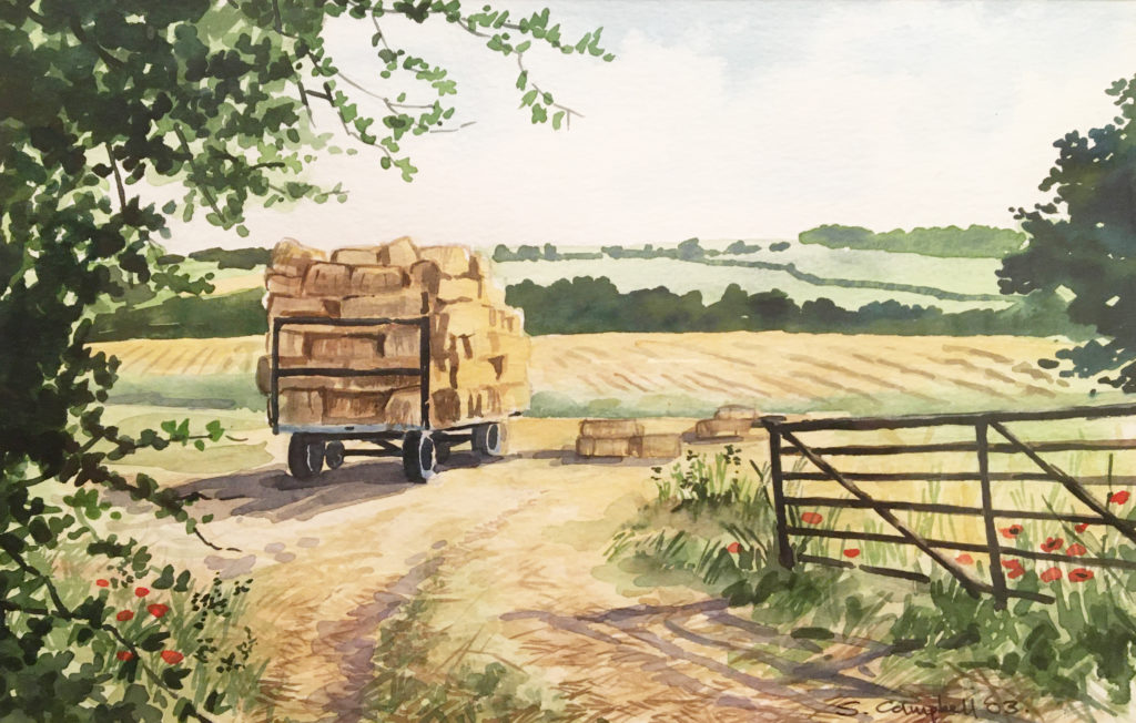 image of Cossall landscape by Sue Campbell